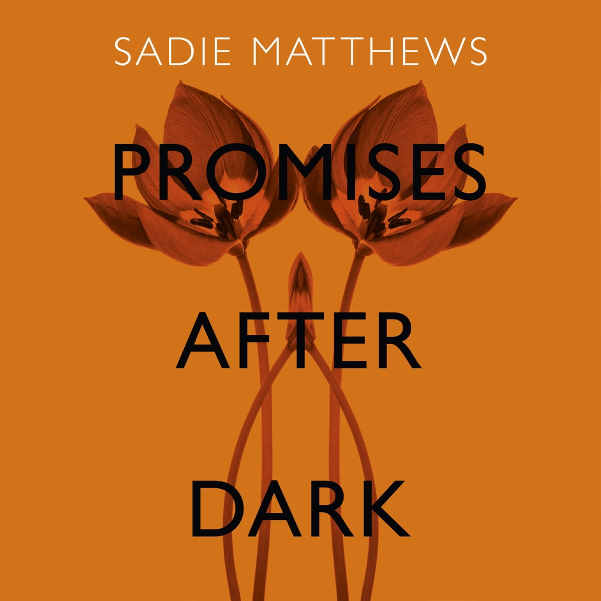 Promises After Dark After Dark Book 3 Audiobook By Sadie
