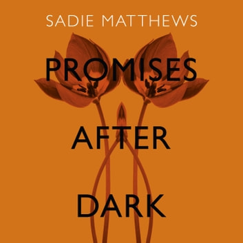 Promises After Dark (After Dark Book 3) - After Dark Book Three audiobook by Sadie Matthews