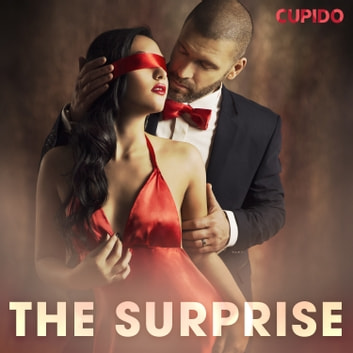 The surprise audiobook by Cupido And Others