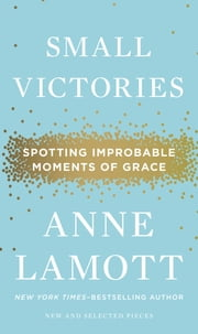 Small Victories - Spotting Improbable Moments of Grace ebook by Anne Lamott