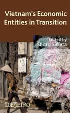 Vietnam's Economic Entities in Transition ebook by S. Sakata