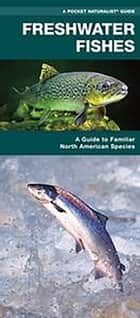 Freshwater Fishes ebook by James Kavanagh,Waterford Press,Raymond Leung
