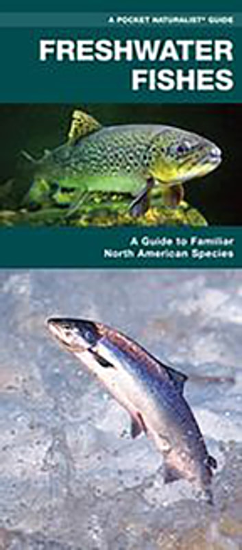 Freshwater Fishes - A Folding Pocket Guide to Familiar North American Species ebook by James Kavanagh,Waterford Press