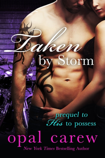 Taken By Storm ebook by Opal Carew