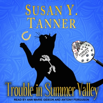 Trouble in Summer Valley audiobook by Susan Y. Tanner