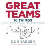 Great Teams - 16 Things High Performing Organizations Do Differently audiobook by Don Yaeger