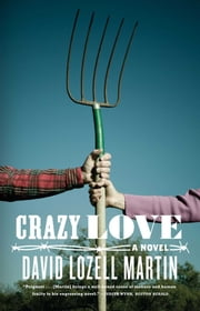 Crazy Love - A Novel ebook by David Lozell Martin