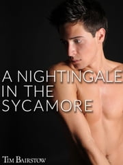 A Nightingale in the Sycamore ebook by Tim Bairstow
