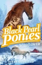 Black Pearl Ponies: Wildflower - Book 2 ebook by Jenny Oldfield