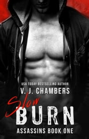 Slow Burn ebook by V. J. Chambers