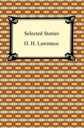 Selected Stories ebook by D. H. Lawrence
