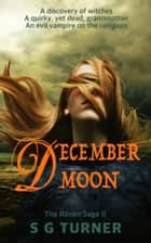 December Moon ebook by S G Turner