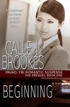 Beginning - PAVAD: FBI Romantic Suspense ebook by Calle J. Brookes