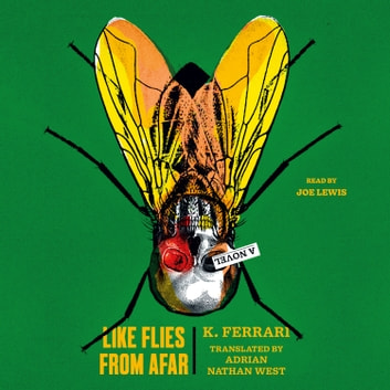 Like Flies from Afar - A Novel audiolibro by K. Ferrari