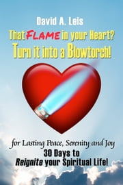 That Flame in your Heart? Turn it into a Blowtorch! - 30 Days to Reignite your Spiritual Life! ebook by David Leis