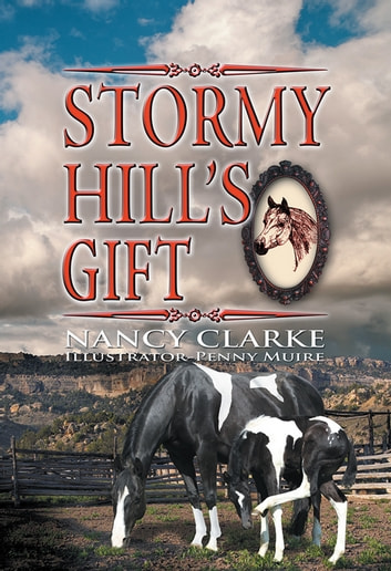 Stormy Hill's Gift ebook by Nancy Clark