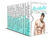 Accidental Attraction ebook by Nicole Morgan, Desiree Holt, Anne Rainey,...