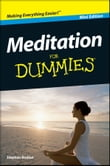 Meditation For Dummies, Mini Edition