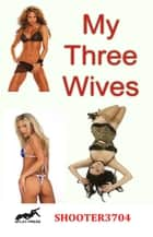 My Three Wives ebook by Shooter3704