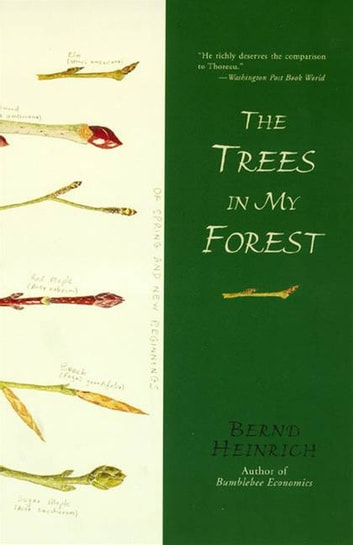 The Trees in My Forest ebook by Bernd Heinrich