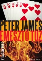 Emésztő tűz ebook by Peter James