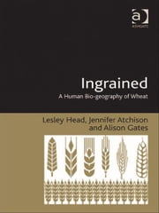 Ingrained - A Human Bio-geography of Wheat ebook by Ms Alison Gates,Ms Jennifer Atchison,Professor Lesley Head