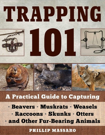 Trapping 101 - A Complete Guide to Taking Furbearing Animals ebook by Philip Massaro
