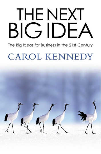 The Next Big Idea ebook by Carol Kennedy