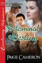 Determined Destiny ebook by Paige Cameron