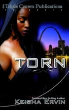 Torn ebook by Keisha Ervin
