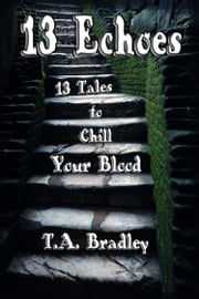 13 Echoes ebook by T. A. Bradley