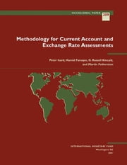 Methodology for Current Account and Exchange Rate Assessments ebook by G. Mr. Kincaid,Martin Mr. Fetherston,Peter Mr. Isard,Hamid Mr. Faruqee