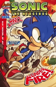 Sonic the Hedgehog #272 ebook by Ian Flynn,Edwin Huang,John Workman,James Fry,Evan Stanley,Terry Austin,Gabriel Cassata
