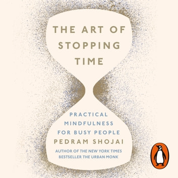 The Art of Stopping Time audiobook by Pedram Shojai