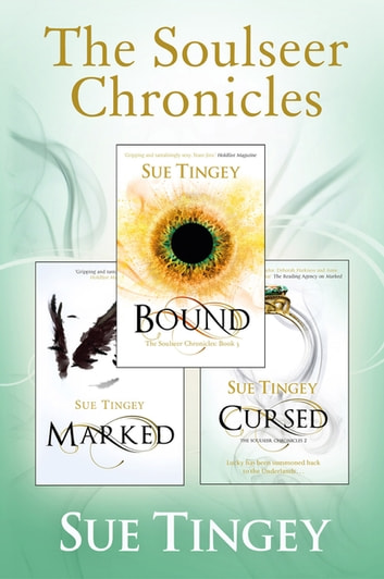 The Soulseer Chronicles ebook by Sue Tingey
