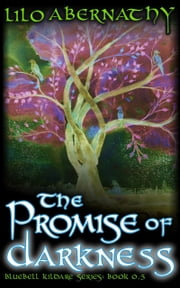 The Promise of Darkness ebook by Lilo Abernathy