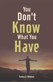 You Don't Know What You have ebook by Festus Ndukwe