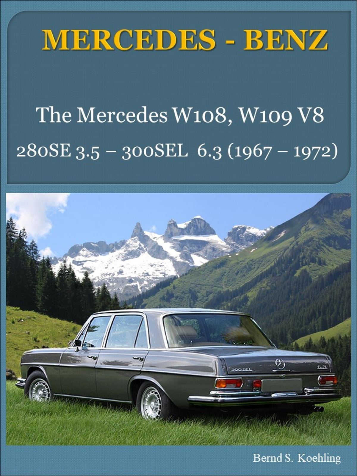 Mercedes benz w108 w109 v8 with buyers guide and chassis number mercedes benz w108 w109 v8 with buyers guide and chassis numberdata card explanation ebook by bernd s koehling 1230000032376 rakuten kobo fandeluxe Gallery