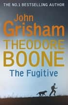 Theodore Boone: The Fugitive - Theodore Boone 5 ebook by