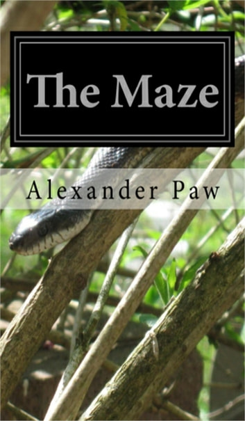 The Maze ebook by Alexander Paw
