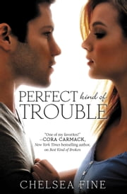 Perfect Kind of Trouble ebook by Chelsea Fine