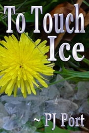 To Touch Ice ebook by PJ Port