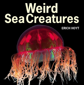 Weird Sea Creatures ebook by Erich Hoyt