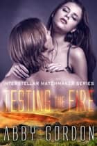 Testing the Fire ebook by Abby  Gordon