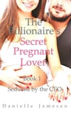 The Billionaire's Secret Pregnant Lover 1: Seduced by the CEO - The Billionaire's Secret Pregnant Lover, #1 ebook by