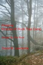 Amazing Miracles At Hook Tree Camp ebook by David M. Lawrence