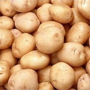 A Crash Course on How to Grow Potatoes ebook by Errol Flynn
