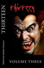 Thirteen Volume Three ebook by Andrew Hannon
