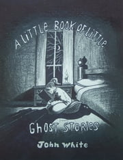 A Little Book of Little Ghost Stories ebook by John White