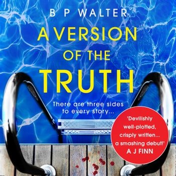 A Version of the Truth audiobook by B P Walter